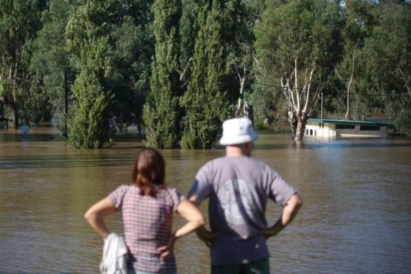 PHOTO: Residents watch the swollen Murrumbidgee River from the levee. (AAP: Lukas Coch)